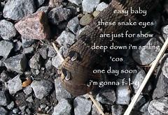 elephant hawk moth caterpillar (floots in devon) Tags: poem poetry caterpillar moth elephanyhawkmoth nature wildlife