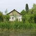 House in Vylkove
