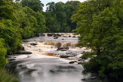 Aysgarth falls (nunes.rui) Tags: aysgarth falls waterfall yorkshiredales river ure slow longexposure england uk unitedkingdom