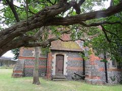 IMG_3388 (belight7) Tags: tree uk heritage england st peters church berkshire