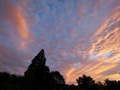 Somerset sunset (Nevrimski) Tags: sunset