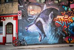 Bouffe à volonté (maoby) Tags: rouge bouffe volonté rue street ville city montréal animal nikon d500 85mm