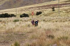 Peruvian Andes (misseka) Tags: peru perurail perurailtititaca andes peruvianandes mountain plain peruvian