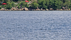 ... so can you spot the seal? I couldn't, at first (thanks Dennis!) In the background is the island Stora Fjäderholmen in Stockholm (Franz Airiman) Tags: halichoerusgrypus säl seal sälis sälx grayseal greyseal animal djur stockholm sweden scandinavia wild vild vattendjur mammal watermammal däggdjur vattendäggdjur gråsäl bay fjärd lillavärtan