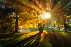 Queenstown Gardens in the Autumn (Trey Ratcliff) Tags: newzealand queenstown treyratcliff stuckincustoms stuckincustomscom hdr aurorahdr landscape garden autumn fall sunburst sunset rays