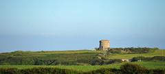 (Andrew_Karter) Tags: martello martellotower cowexford countywexford wexford ireland eire