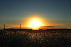 (Andrew_Karter) Tags: hook hooklighthouse sunset cowexford countywexford wexford ireland eire