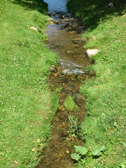 Grass And Stream. (dccradio) Tags: middletown md maryland frederickcounty outdoor outdoors outside surreybrooke surreybrookegardens june summer summertime wednesday afternoon goodafternoon wednesdayafternoon canon powershot elph 520hs grass lawn greenery yard brook stream water river creek creekbank riverbank bodyofwater scenic beauty nature natural pretty beautiful peaceful rocks ripples stones