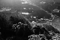 Photo of Llangrannog