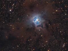 Iris Nebula (Photonen-Sammler) Tags: ngc7023 iris nebula deep sky astrophotography astronomy lrgb