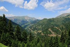 Mountains vol.1 (Xenofon Levadiotis) Tags: βουνό εξοχή όροσ οροσειρά χλωρίδα δάσοσ σύννεφο ορίζοντασ ελλάδα πίνδοσ άγραφα καρδίτσα ευρυτανία έλατο πετρίλο πετρίλια βλάσι χαρίσι γενιτάκι καράβα βουτσικάκι τρίασύνορα 3σύνορα mountainrange mountains mountainside mountainroad evritania karditsa pindos pindus mountain forest tree trees pine alpine petrilo petrila genitaki harisi voutsikaki karava landscape σπάθασ spathas socrates