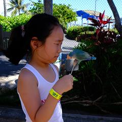 20190609-DSCF2247.jpg (MoOLpAsS) Tags: waimanalo 하와이주 미국