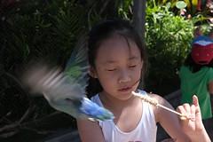 20190610-DSCF2155.jpg (MoOLpAsS) Tags: waimanalo 하와이주 미국