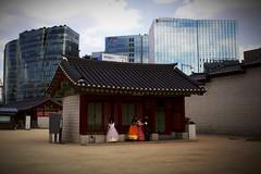 Gyeongbokgung Palace #3 (perXpective) Tags: travel city seoul korea asia world street photography culture nature green scenery urban lifestyle life busy people person hambok temple gyeongbokgung tradition