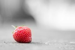 DN9A7904 (Josette Veltman) Tags: aardbeien ijsselmuiden kalter photowalk overijssel
