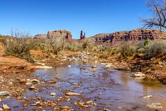 Valley of the Gods (efiske) Tags: utah valleyofthegods canyon river rocks desert landscape