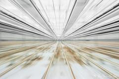 DN9A7752 (Josette Veltman) Tags: aardbeien ijsselmuiden kalter photowalk overijssel