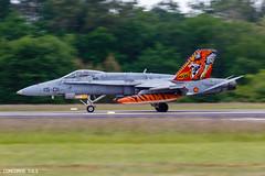 NTM_BA11820190517_4595.jpg (Concorde_3.6.3) Tags: ba118 montdemarsan ntm ejércitodelaire spottersday ef18amhornet ntm2019 natotigermeet spaf france ala15 aircraft event squadron spanishairforce xmj mcdonnelldouglas spotterday ba118colonel rozanoff générals lfbm tigermeet landes