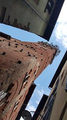 Lucca - tower (Ladyhelen_) Tags: lucca italy toscana churchsanfrediano sanfrediano tower architecture ivantheimer sky clouds cityart words poetry poem verses