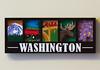 Washington (state) (Osdu) Tags: magnet fridgemagnet refrigeratormagnet souvenir souvenirs travel world usa america washington