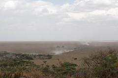 Serengeti (rwoan) Tags: simiyuregion tanzania