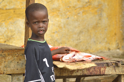 Boy in the Fish Market