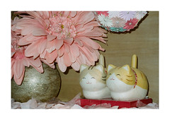 FILM - Kitty twins (fishyfish_arcade) Tags: 35mm analogphotography canonsureshotz135 filmphotography filmisnotdead istillshootfilm kodak newyork portra400 analogcamera compact film cats flower
