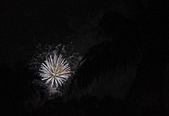 In A Dark Sky (ACEZandEIGHTZ) Tags: holiday nikond3200 independenceday 4thofjuly fireworks night sky smoke silhouette palmfronds