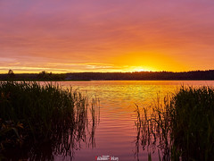 Colorful sunset (zaxarou77) Tags: colorful sunset color red orange yellow nature water sky sun clouds landscape panasonic lumix gx8 20mm russia volga micro