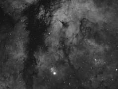 IC1318 - Sadr Region (H-Alpha) (DeepSkyDave) Tags: astrophotography astrofotografie astronomy astronomie night sky nacht himmel stars sterne deepsky cosmos kosmos natur nature long exposure langzeitbelichtung low light astrodon