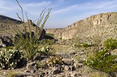 US - Mexican Border III (rschnaible) Tags: big bend national park usa texas outdoors landscape desert us mexican border southern rio grande river
