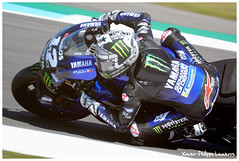 Dutch TT ASSEN 2019 (Xavier-Philippe Lemierre) Tags: dutchtt ttassen motogp dorna fim maverickviñales monsterenergy yamahamotogp race winner