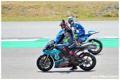 Dutch TT ASSEN 2019 (Xavier-Philippe Lemierre) Tags: dutchtt ttassen motogp dorna fim fabioquartararo petronasyamahasrt