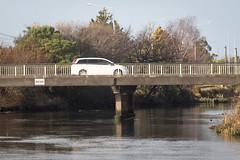 Give Way (187/365) (johnstewartnz) Tags: bridge avonriver avon river bassetstreet canon canonapsc apsc eos 7dmarkii 7d2 7d canon7dmarkii canoneos7dmkii canoneos7dmarkii 70200mm 70200 70200f28 70200mmf28 187365 day187 onephotoaday oneaday onephotoaday2019 365project project365 100canon