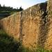 Megaliths in Baalbek quarry_09132