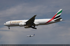 A6-EFF - Boeing B777-F1H [955/35612] - Emirates Airline - EDDF / Frankfurt am Main - 25 May 2019 (Leezpics) Tags: a6eff frankfurt fra b777 emiratesairline n223ua tripleseven boeing eddf aircraftspotting planespotting 25may2019 airliners commercialaircraft hesse germany