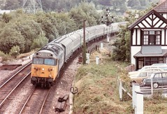 50028 Cowley Bridge Junction July 1984 (clivepsmithmarch1960) Tags: 50028 exeter cowleybridgejunction