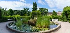 Entspannung und Ruhe (KaAuenwasser) Tags: panorama botanischergartenkarlsruhe karlsruhe botanischergarten park anlage brunnen historisch pflanzen wasserpflanzen wasser hecken gebäude orangerie baum bäume grün sitzbänke sitzbank seerosen blüten blüte himmel wolken blau ruhe entspannung idylle