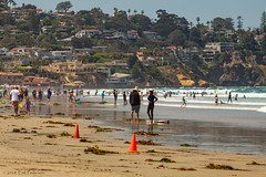 A popular day for a swim (GoodLifeErik) Tags: pacificphotographicsociety scrippscoastalmeander lajolla lajollashores beach sand crowds swimmers surf ocean water waves pacificocean telephoto