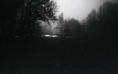 Midnight activities (Gwebur) Tags: film fujifilm neopan400 expired rodinal 150 nikon fe nikkor 50mmf2ai night trees lights fog grain bw