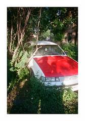 car and overgrowth (jellygeist) Tags: olympusxa olympus kodak portra400 film analog 35mm 35mmfilm