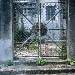 Old Gate (RunnyInHongKong) Tags: square nikoncoolscan9000 mediumformat 6x6 lukkeng fujiprovia400x posiitve carlzeiss80mmf28 hongkong hasselblad500cm newterritories film vuescan