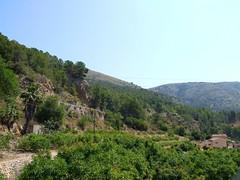 2019_lsnape_Spain_CostaBlanca_Altea_Guadalest_valley_hills_DSCF2834 (Star Rocker) Tags: spain costablanca mediterranean guadalest holiday tourism valley terraces orangegrove hills