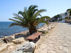 2019_lsnape_Mediterranean_Altea_coast_beach_sea_tourism_DSCF2895 (Star Rocker) Tags: spain costablanca mediterranean altea sea beach seafront beachfront bench palmtree seaview bay