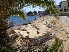 2019_lsnape_Mediterranean_CostaBlanca_Altea_coast_beach_sea_rocks_palmtree_DSCF2896 (Star Rocker) Tags: spain costablanca mediterranean altea sea beach seafront rocks palmtree bay overlookingthesea