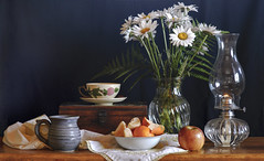 Still Life With Daises and Fruit (mevans4272) Tags: life still fruit cups flowers lamp oil