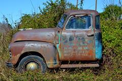 DSC_0097 (Andy961) Tags: columbia virginia va truckgraveyard chevrolet truck foliage