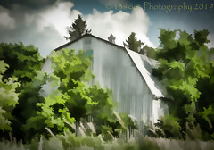 Gone is the Wind #2 (HSS) (13skies) Tags: barn farm slidersunday trees topaz painterly effect software roof paintedlook happyslidersunday post postprocessing postwork white abstract a2a attraction2abstraction