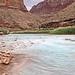 View upriver towards Navajo Nation - Little Colorado River - Grand Canyon