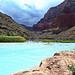 View downriver towards confluence - Little Colorado River - Grand Canyon